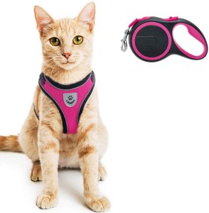 PUPTECK Cat Harness And Leash