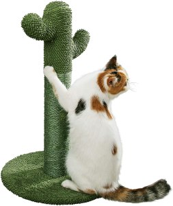 PetnPurr Cat Scratching Post