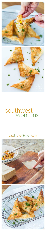 Southwest Wontons | Catz in the Kitchen | catzinthekitchen.com | #wontons #southwest #recipe