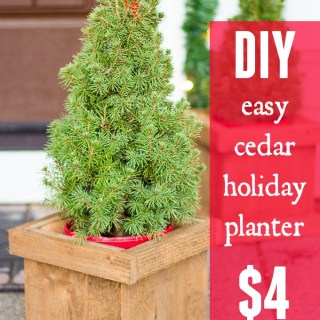 diy-easy-cedar-holiday-planter