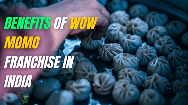 Benefits Of Wow Momo Franchise In India