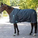 Harry's Horse 32200681–125 cm Couverture Thor 20 g, M, Ebony