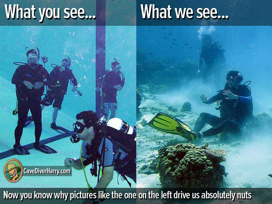 what_we_see?resize=870%2C653 our 23 best dive training memes cave diver harry