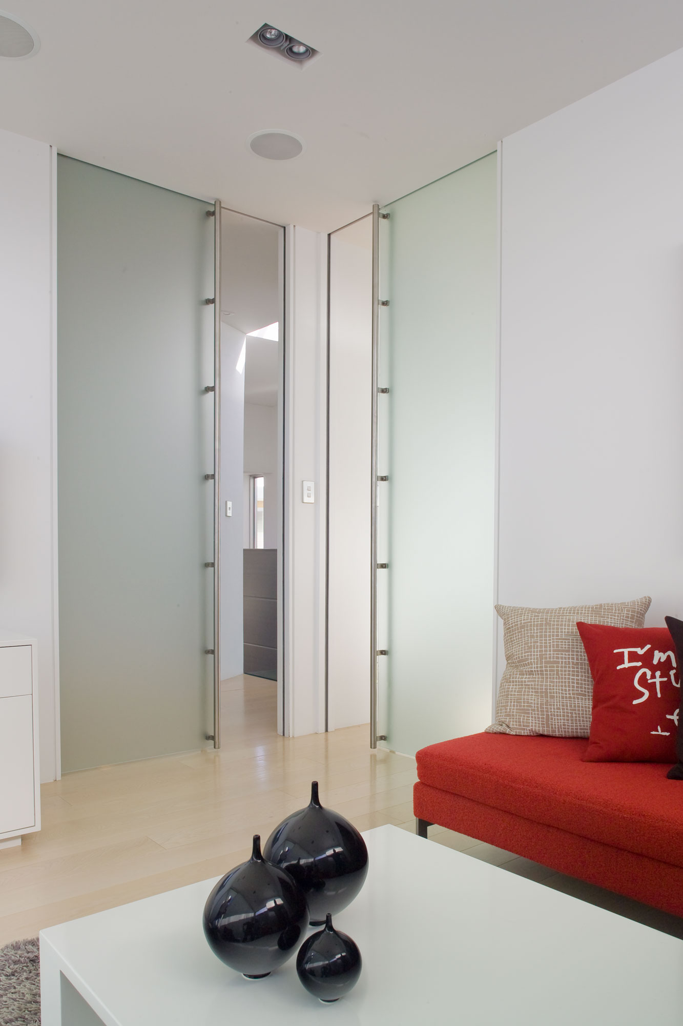 Frameless Glass Cavity Slider Doors