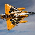 IMAGENS: Mirage 2000C da França no padrão Tiger Meet 2010