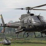 Helibras vai modernizar 33 helicópteros Esquilos do Exército