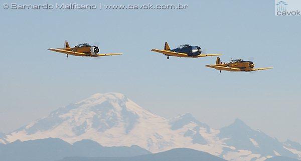 Aeronaves da Segunda Guerra Mundial de diversos museus da região compareceram e foram demonstradas em voo. (Foto: Bernardo Malfitano / Cavok)