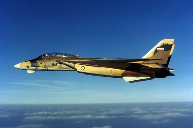 IIAF-F-14 (1)