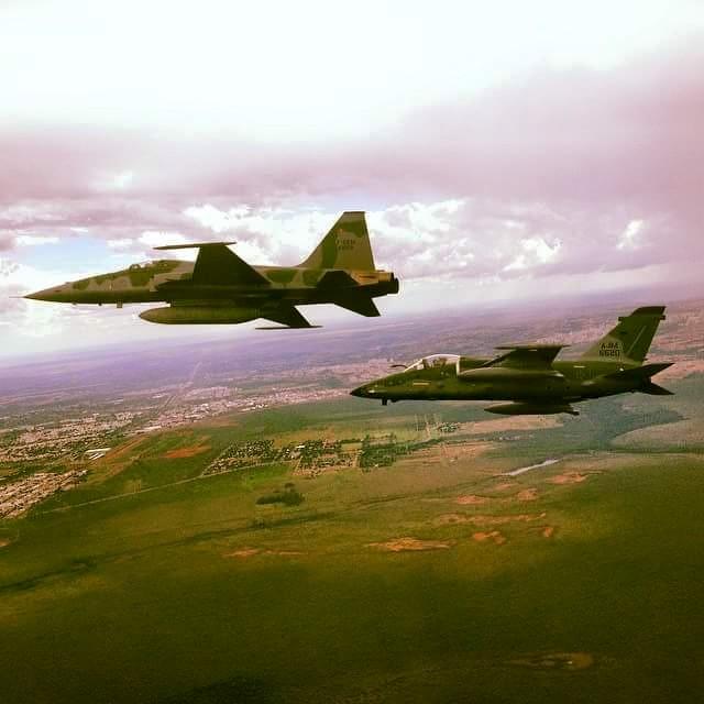 F-5_AMX_
