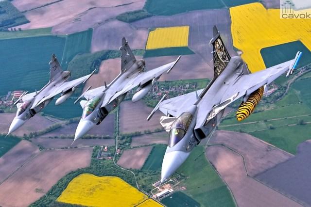 Saab_Gripen_LionEffort2015 (1)