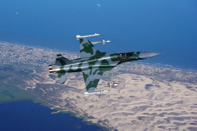 F-5EM #2