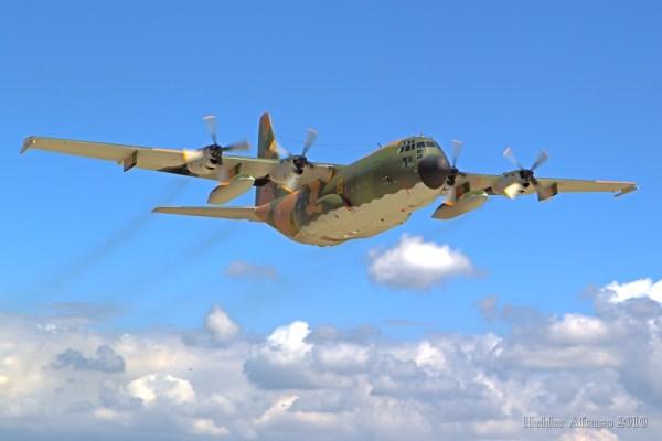 """A aeronave C-130H que ciau em Portugal pertencia ao Esquadra 501 """"Bisontes"""". (Foto: Pássaro de Ferro)"""