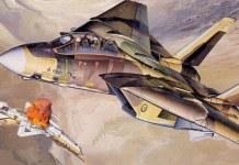 F 14 IRIAF - ESPECIAIS