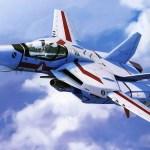 """F-14 """"MACROSS"""""""