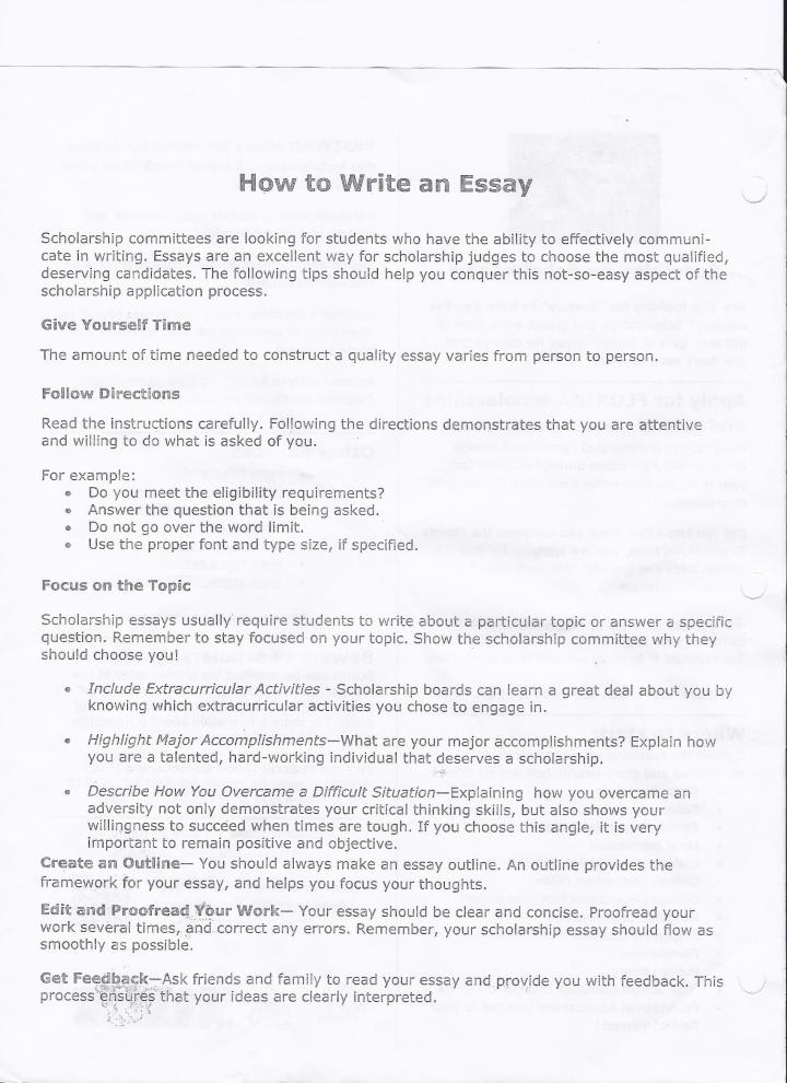 college level essay format