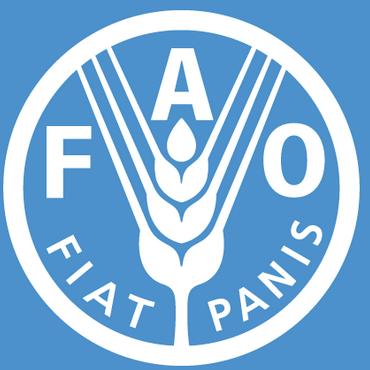FAO Rice Training Program Ghana