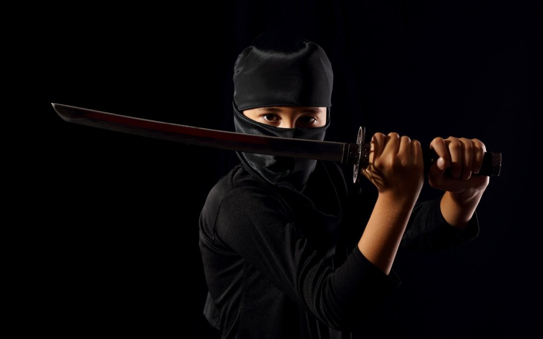 7 Ninja Hacks for Your Alumni Blog