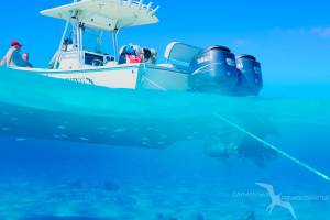 our regulator 26fs private charter boat anchored at a snorkel reef in grand cayman