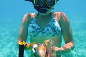 girl holding a conch while snorkeling in grand cayman