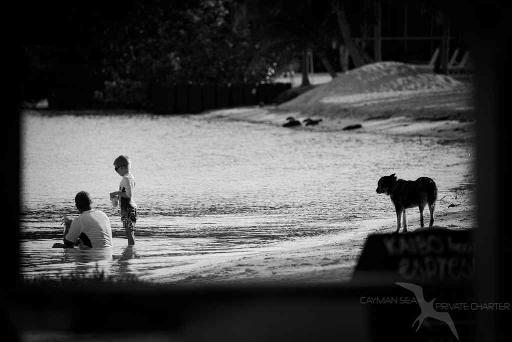 boys with his dad and dog on the beach at kaibo grand cayman during a private boat charter