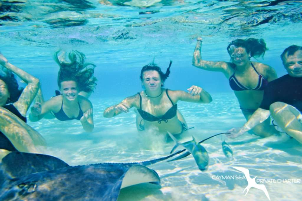 family underwater with stingrays on a private boat charter