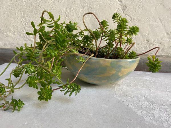 Matera Con Planta Colgante. Azul|Amarillo. (M)