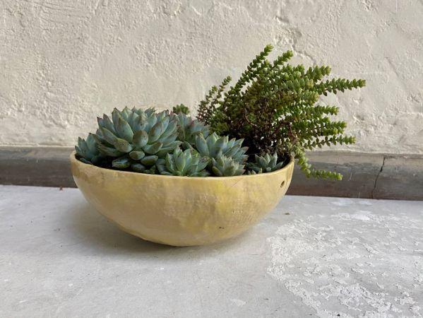 Matera Con Planta Colgante. Amarillo Brillante. (M)