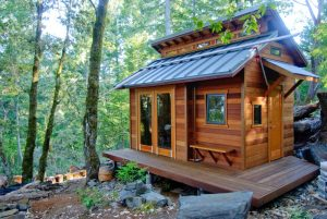 The Tiny House Considered