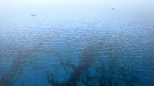 Oil floats in the water near the source of the Deepwater Horizon oil spill in the Gulf of Mexico near the coast of Louisiana, on Friday.