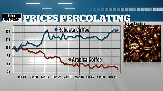 The spread between robusta and arabica coffee beans has changed drastically this year.