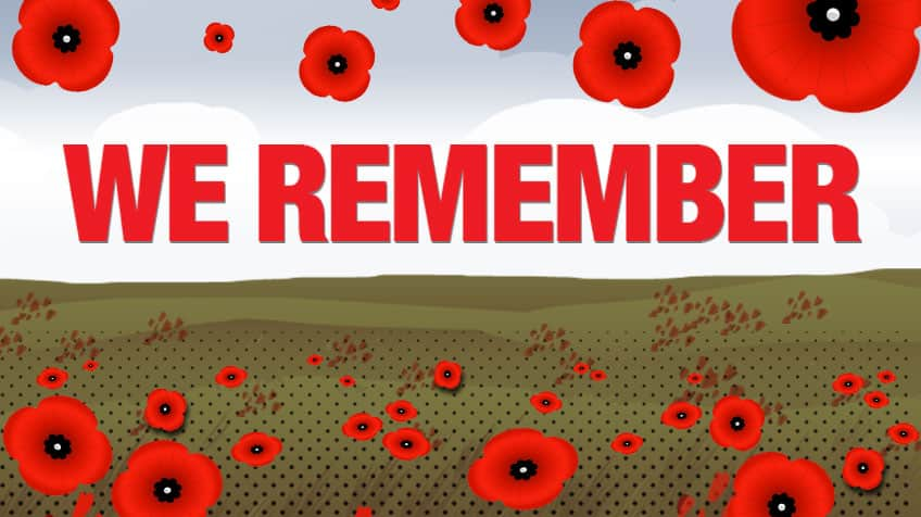 Remembrance Day 18000000 Poppies And More Interesting
