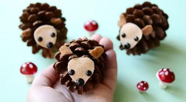pineconehedgehogs_lead_jdubien