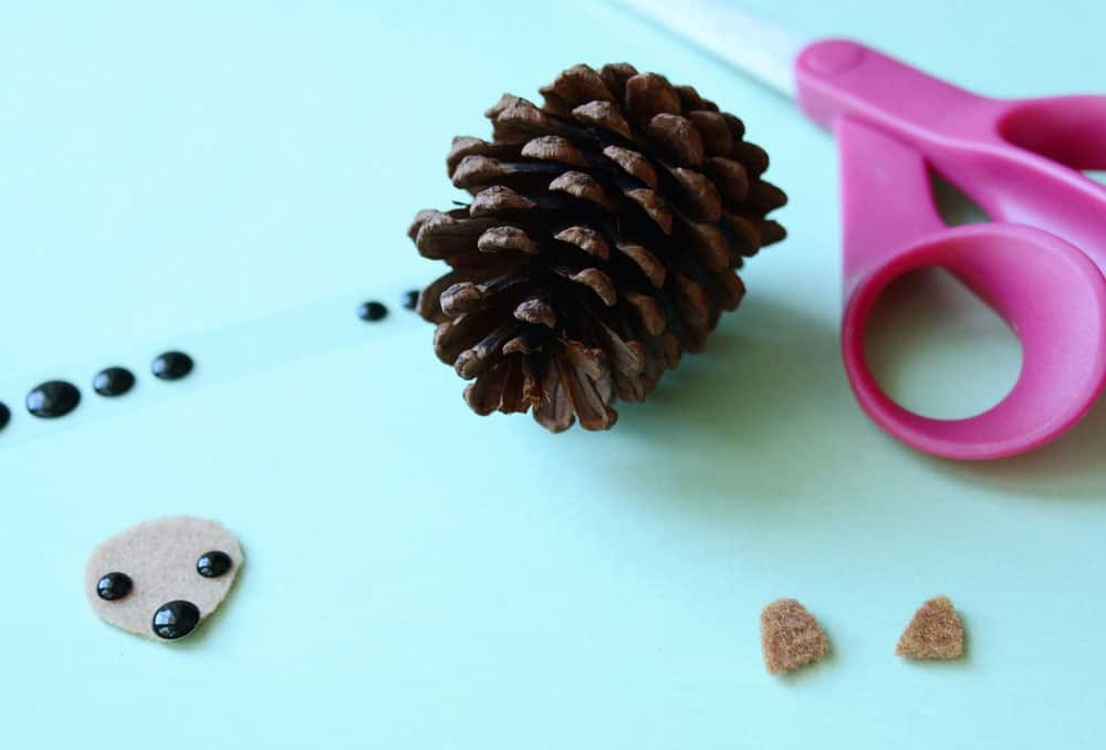 A pine cone and a felt triangle.