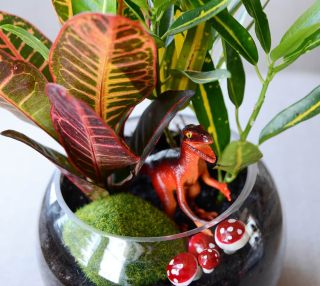 A terrarium with plants, a grassy rock, a toy dinosaur and plastic mushrooms.