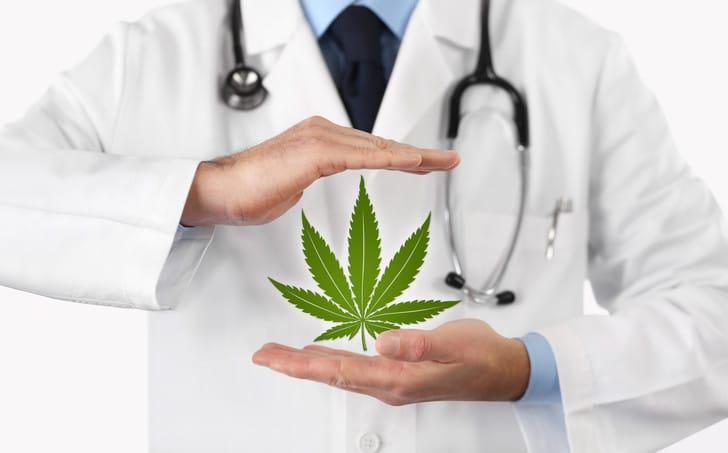 Cannabis thérapeutique : pour quels symptômes ?