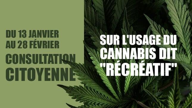 Consultation citoyenne sur l'usage du cannabis recréatif