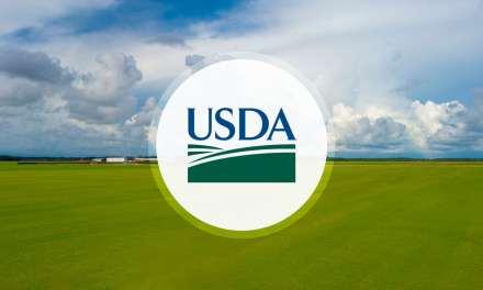 USDA : collecte d'informations auprès de 20000 producteurs de chanvre