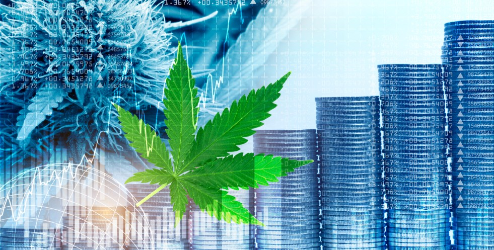 stacks of coins increasing in size from left to right with a hemp leaf in front of them all