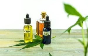 CBD olej bez THC