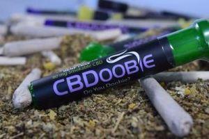 Buy two get one CBDoobie free - Cyber Monday CBD Flower Deals.