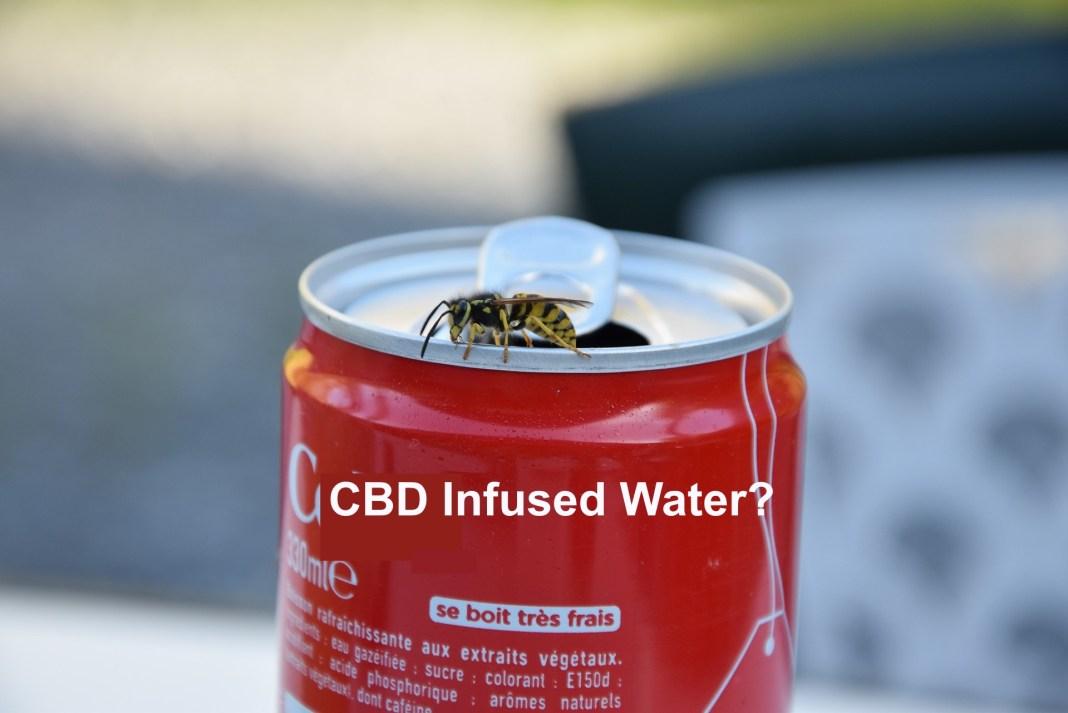 CBD Cola Water