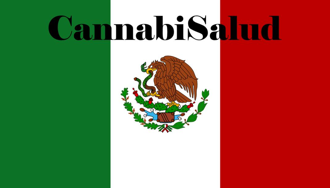 CannabiSalud - Bringing Medical Cannabis To Latin America