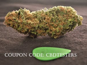 Premium Hemp Flowers for $3.2/g: Suver Haze