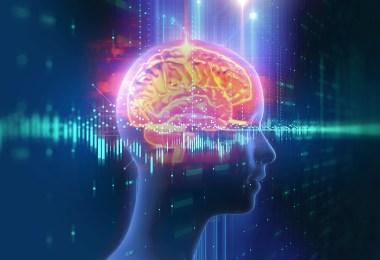 cannabinoids brain injury