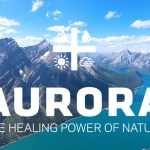 Aurora_Cannabis_CBDToday