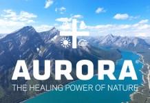 Aurora_Cannabis_CBDToday