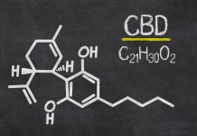 CBD molecule science CBD Today magazine