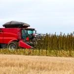 American farmers_turn_to_hemp farming_CBDToday