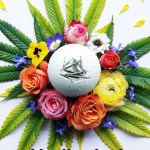 Cannabombz-Bath-bomb-CBD-products-CBDToday