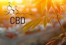 FDA-CBD-Hearing-KushCo-CBDToday